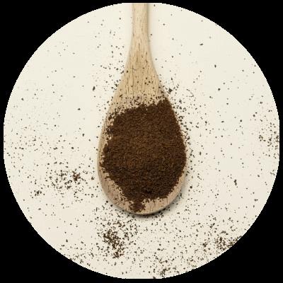 media/image/Mushroom-Coffee-Inhalt-Pulver.png