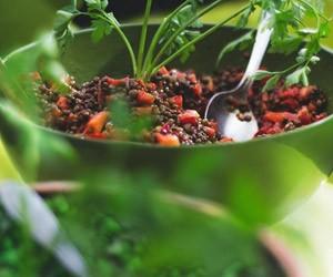 Satt mit Salat mit Linsen