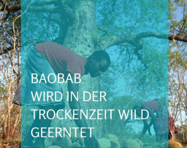 baobb