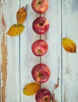 Apples: Photo by Fischer Twins on Unsplash